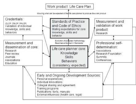 Standards of Practice for Life Care Planners